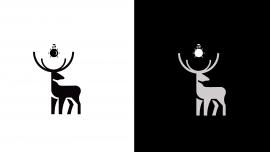 Ziemeļu akcents – dizaina mēbeles un apgaismojums logo